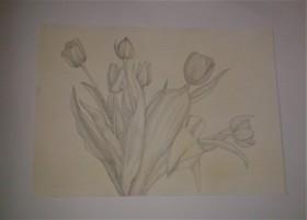 Naturstudie 01